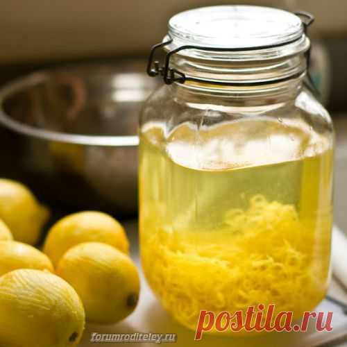 Домашний лимончелло: слабый алкогольный напиток :: социальная сеть родителей