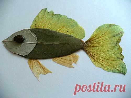 (+1) тема - Сделать с детьми работу из сухих растений | Очумелые ручки