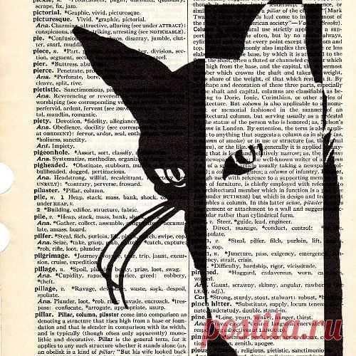 Киса / Книги в интерьере / Модный сайт о стильной переделке одежды и интерьера
