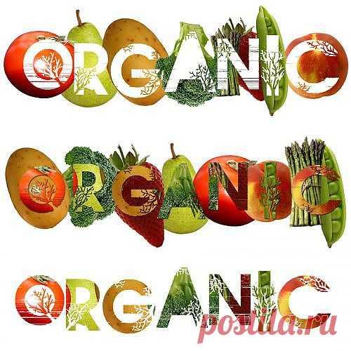 SOOLARBOY: Матвиенко: органические сельхозпродукты могут стать второй нефтью