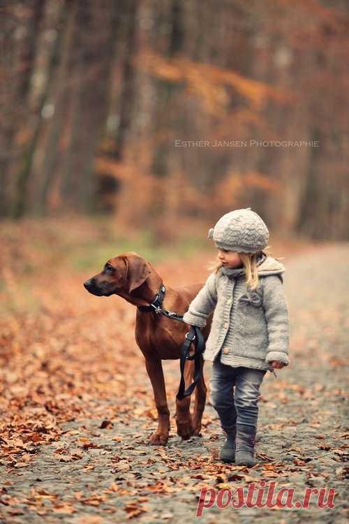 С лучшим другом на прогулке! Не забывайте своих друзей
