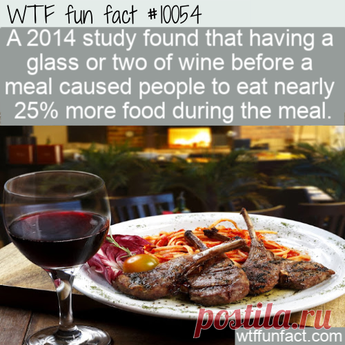 WTF Fun Fact – Eat More With Wine – Top Best Celebrity Blogs