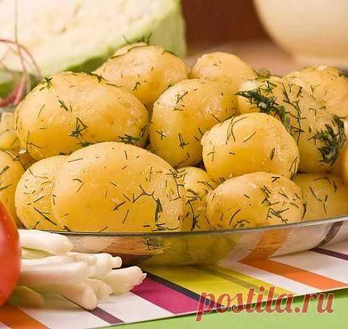 Как варить картошку правильно?