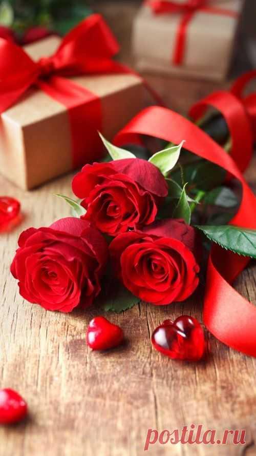 Rosas rojas   love, amor y flores