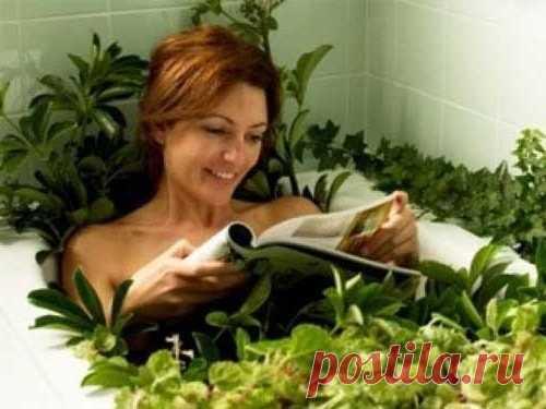 Ванны для тела из лекарственных трав  Принятие ванн способствует расширению пор и улучшению кровообращения, что прекрасно сказывается на внешнем виде кожи и общем состоянии здоровья. Если регулярно делать ванны для тела из лекарственных …