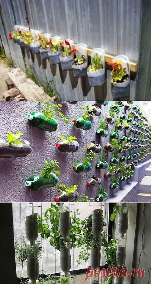 Как сделать оранжерею — поделки для дачи из пластиковых бутылок.