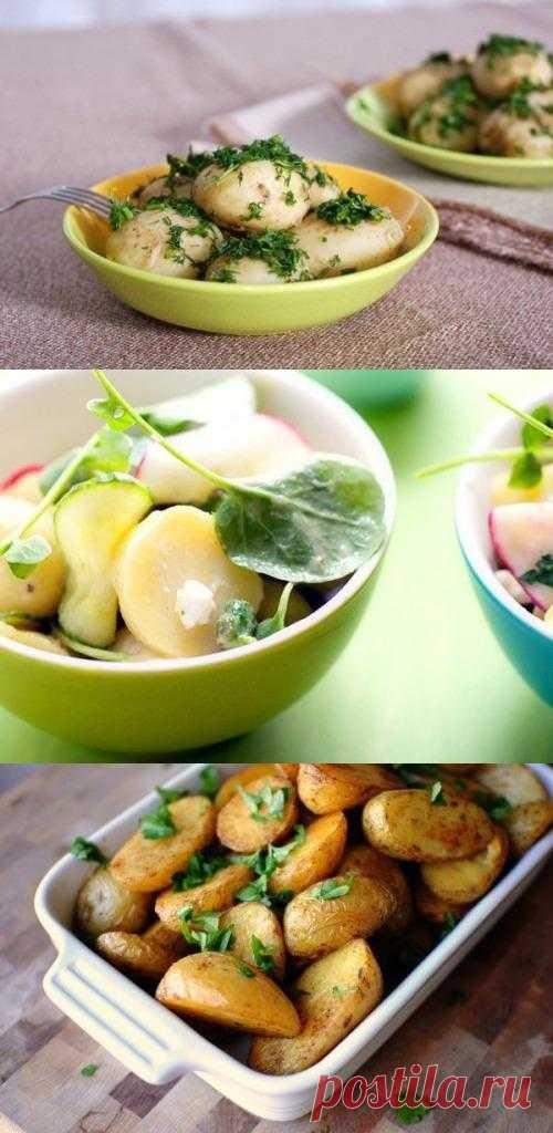 Блюда из молодого картофеля