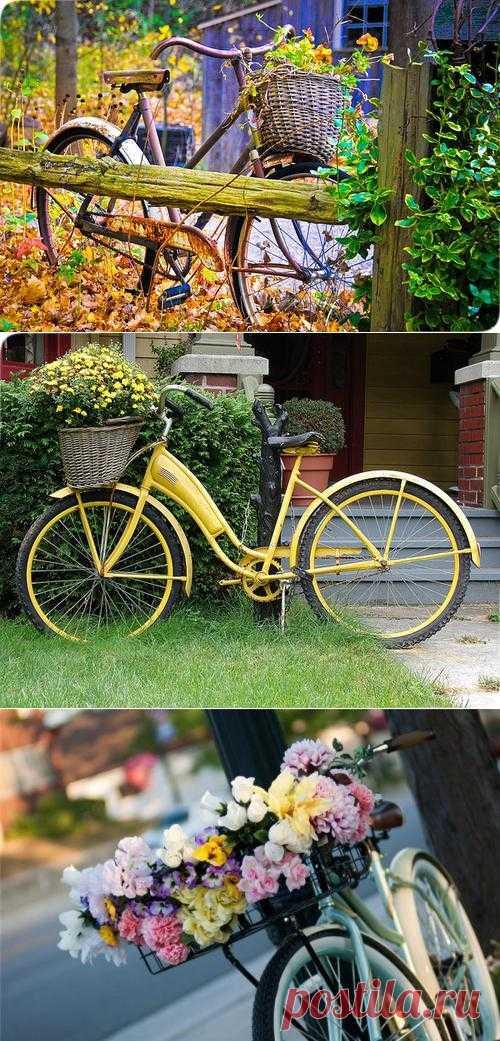 Велосипед - чтобы ездить или декорировать?