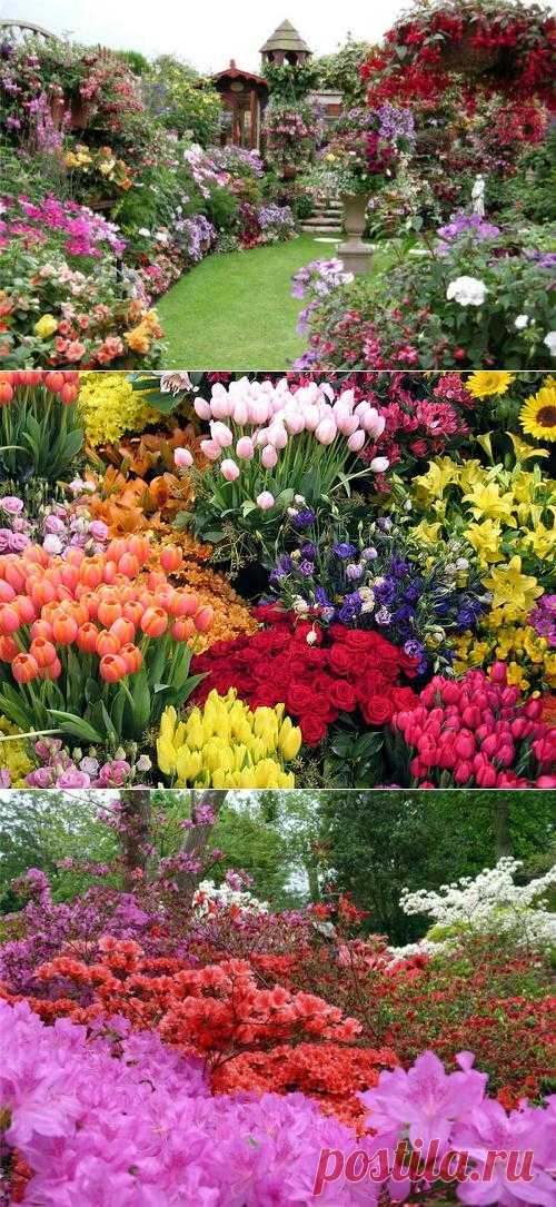 Цветочный сад своими руками