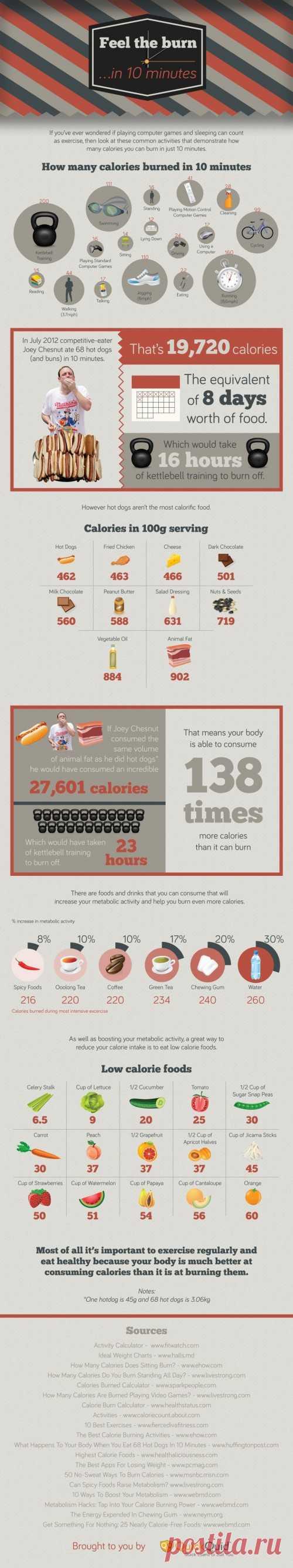 ИНФОГРАФИКА: Подсчет калорий для гиков