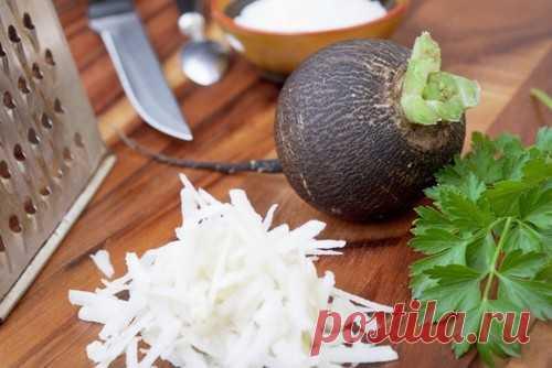 Салаты из черной редьки: рецепты с фото простые и вкусные