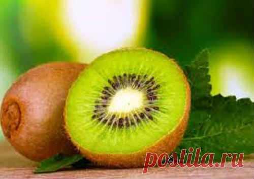 Киви фрукт - польза и вред для организма