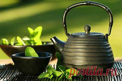 Эти 10 полезных свойств зеленого чая заставят тебя полюбить этот напиток еще больше! — 1001 СОВЕТ