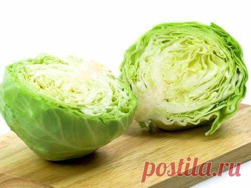 Еда. Что приготовить из белокочанной капусты? Бюджетно и низкокалорийно. Варианты блюд   Люда Едова   Яндекс Дзен