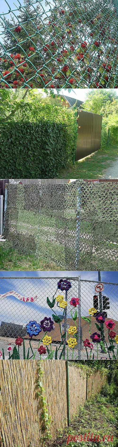 8 способов, чем закрыть забор из сетки рабицы | Дом Мечты