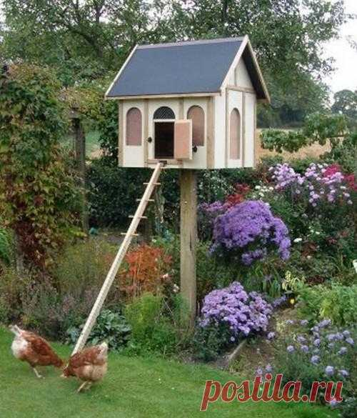 Beautiful lodges for hens.
