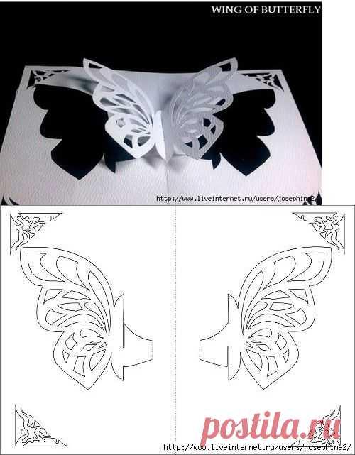 Необычных, как сделать объемную бабочку для открытки