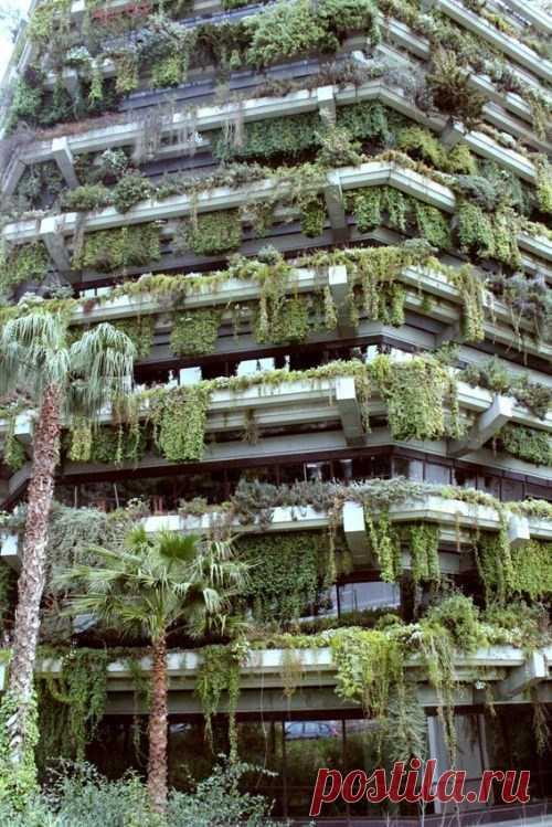 Los jardines verticales que cuelgan en Barcelona, España.
