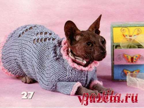 вязание для кошек сфинксов с описанием и схемами Vjazemru