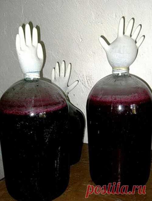 Виноградное вино в домашних условиях  Если у вас дома растет обыкновенный виноград, и вы даже не знаете, как называется этот сорт, поздравляю вас! Из этого простого сорта можно сделать прекрасное виноградное вино в домашних условиях, гла…