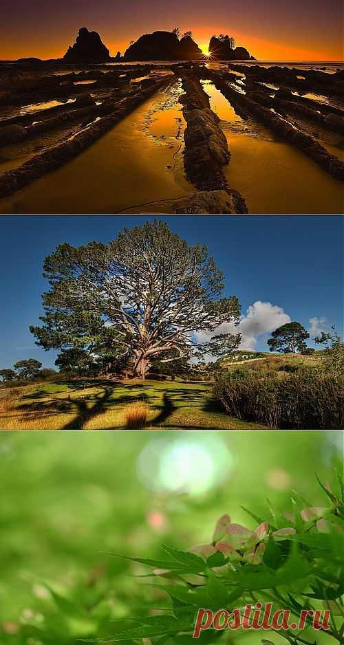 Nature WideScreen Wallpapers 68 (36 обоев) » Красивые картинки, Обои для рабочего стола, Картинки на рабочий стол, Красивые фото девушек. Ежедневно