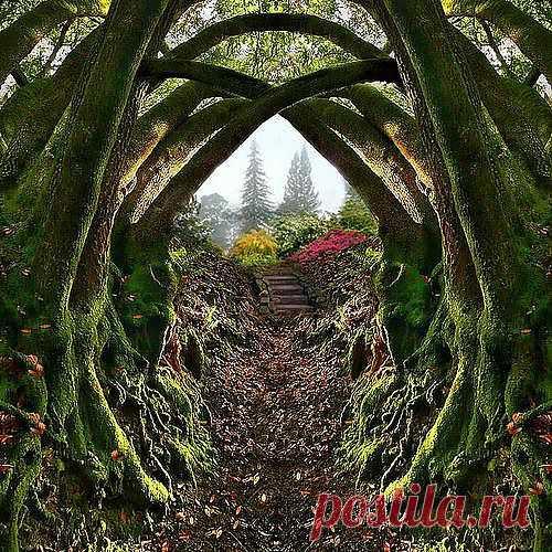 Вход в секретный сад, Портланд, Орегон