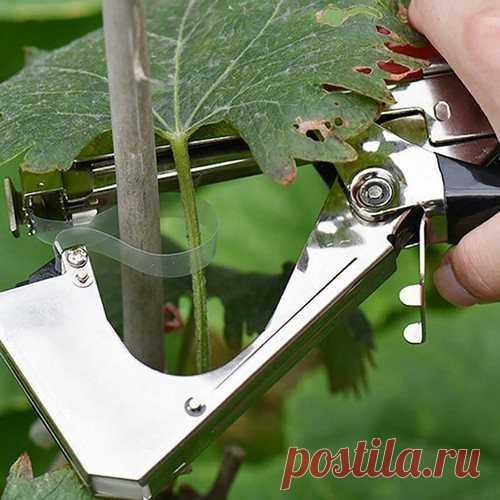 5 гениальных изобретений для сада и огорода