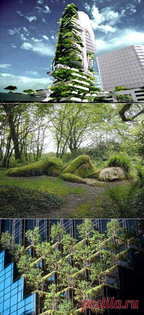 Самые необычные сады мира
