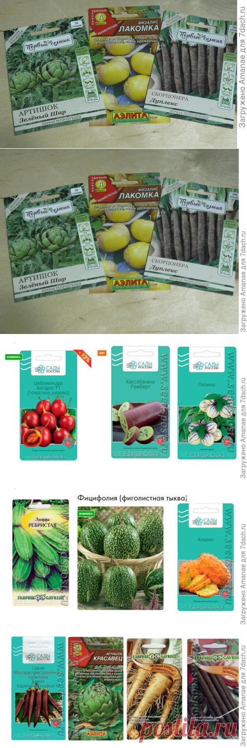 Чудо-овощи, или Овощные экзоты на наших грядках