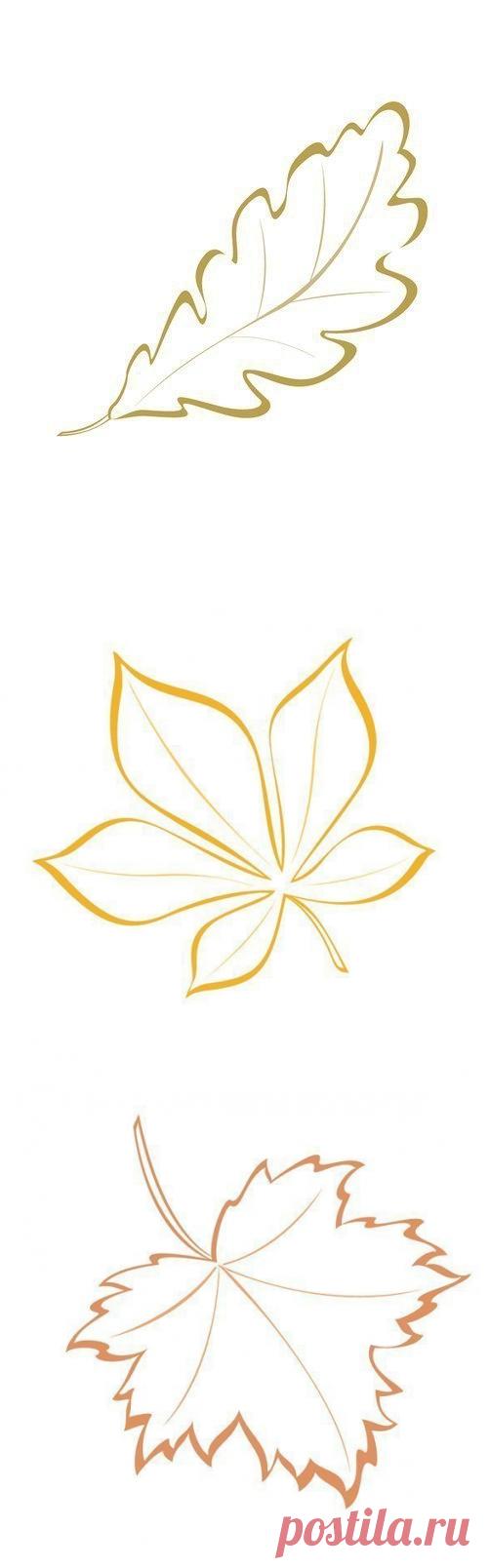 Красивые шаблоны осенних листьев для творчества — Поделки с детьми