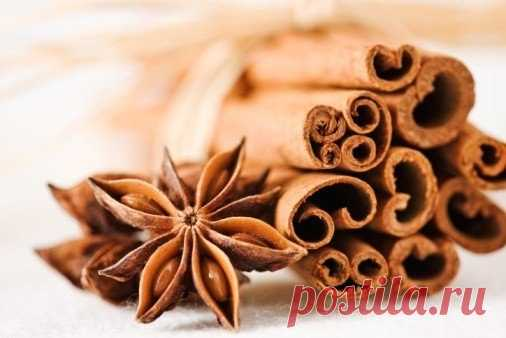 4 useful properties of cinnamon about which it is worth knowing