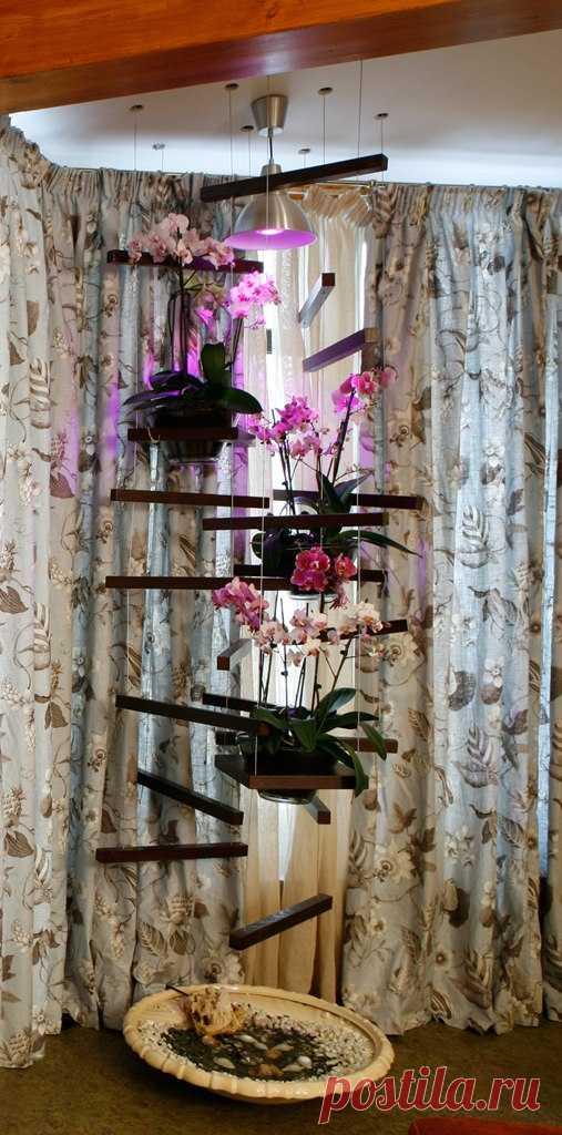 Вертикальный зимний сад