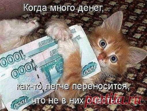 Когда много денег