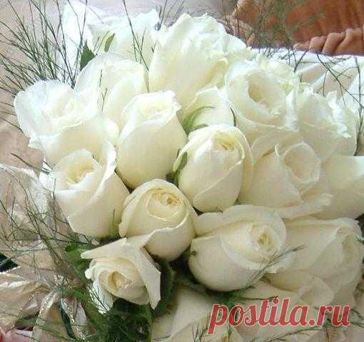 Букеты белых роз картинки с надписями