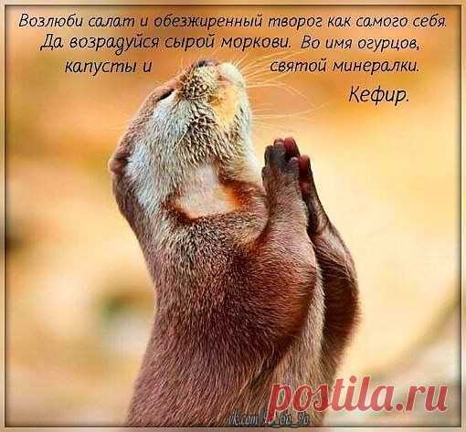 Молитва худеющей