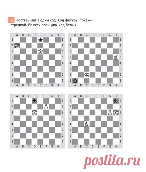 К концу первой тетради ребенок будет знать, какова цель шахматной игры, что такое шах и мат, и сможет играть свои первые партии.
