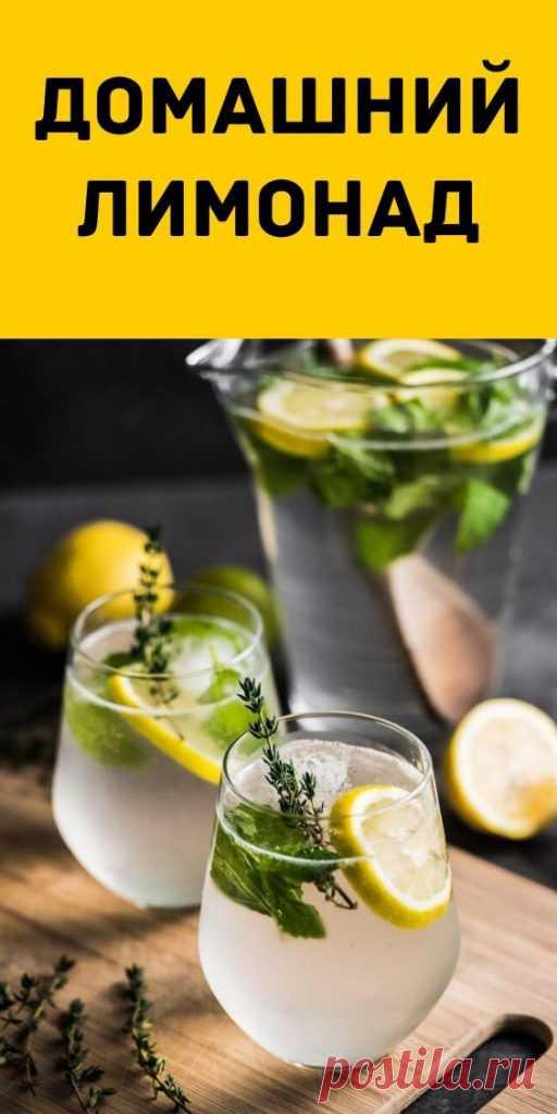 Домашний лимонад - Образованная Сова