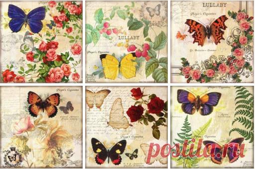 Картинки с бабочками для творчества   https://vk.com/i_d_t?w=wall-31805219_162249