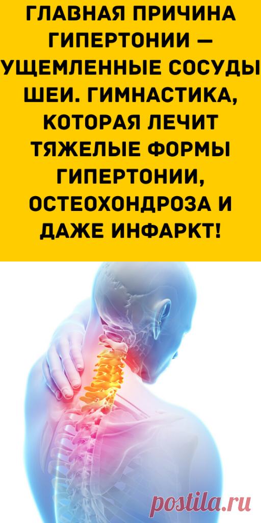 Главная причина гипертонии — ущемленные сосуды шеи. Гимнастика, которая лечит тяжелые формы гипертонии, остеохондроза и даже инфаркт! - Образованная Сова