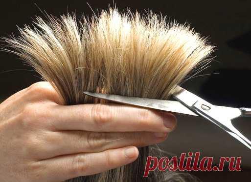 Стрижка волос по дням недели: приметы