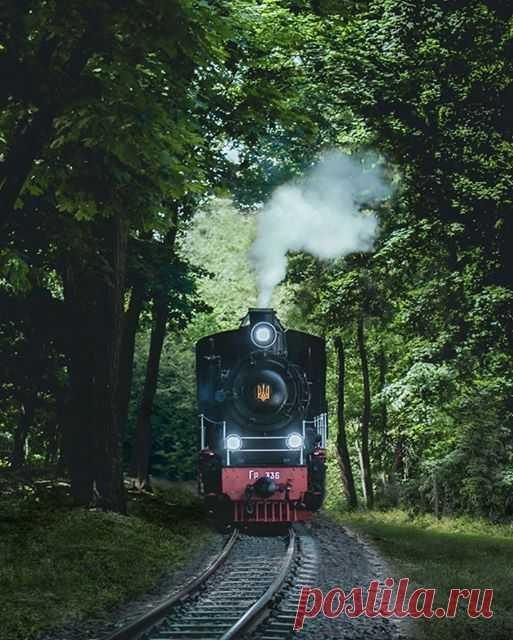 Kiev Children's Railway. It was opened on August 2, 1953 Київська дитяча залізниця. Була відкрита 2.08.1953 року  І досі використовує паротяг ГР-336, отриманий за німецькими репараціями. Цього року рухомий склад зовнішньо освіжили, модернізували станції та колію.