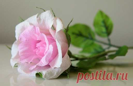 Розы из гофрированной бумаги пошагово. 8 марта. Розы из гофрированной бумаги - очаровательное украшение для любого праздника. Есть много способов для создания такого цветка пошагово.
