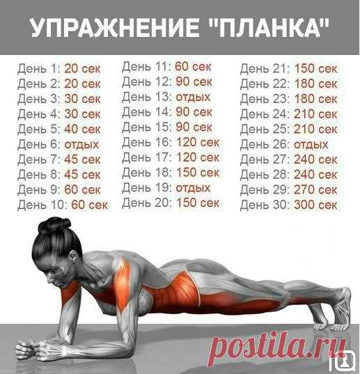 ¡El ejercicio \