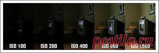 ISO фотоаппарата   Основы фотографии