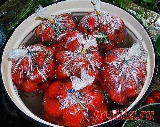 Помидоры в пакетах. Помидоры в пакетах — это один из самых простых и быстрых способов соления помидор в домашних условиях. Вкусная, остренькая закуска к вашему столу без лишних заморочек! Вам потребуется: 1 кг. помидор 1 ст. л. соли 1 ч. л. сахара Укроп, 1-2 головик чеснока. Как готовить:  1. Необходимо выбрать томаты примерно одно размера, чтобы помидорчики просолились одновременно. Помидоры помыть, срезать у низ носики, сложить в пакет. 2. Чеснок очистить, измельчить и добавить в подгото