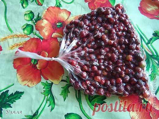 Заморозка фруктов и овощей