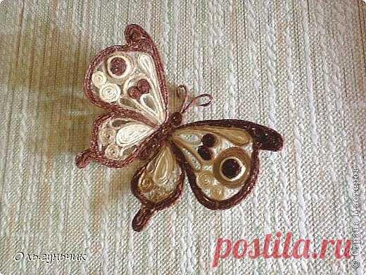 La mariposa interernaya - shpagatnaya la filigrana