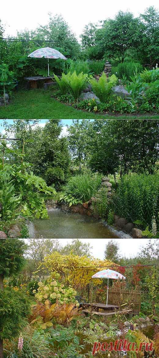 Водоём в саду своими руками, зона отдыха в саду