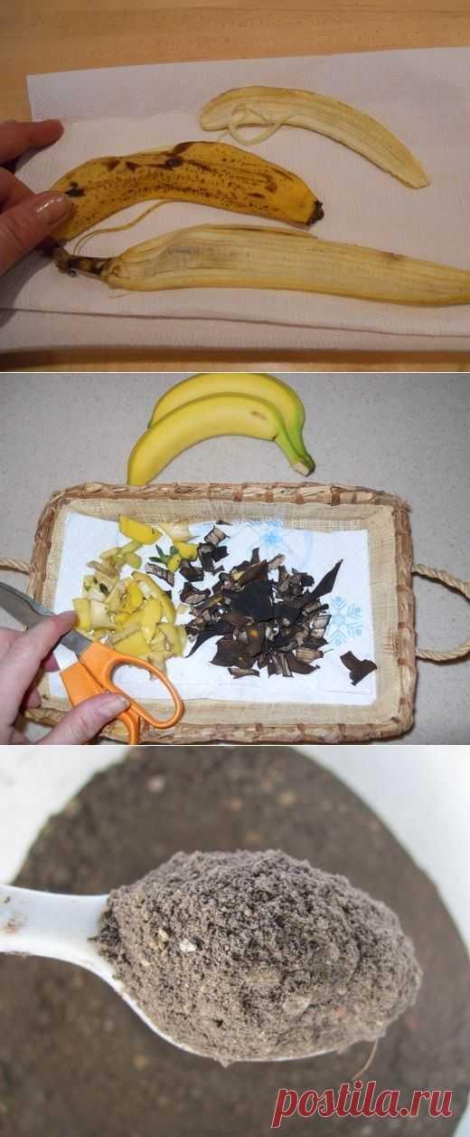 Помогите вашим цветам расти! - Сушеные Banana Peel удобрений