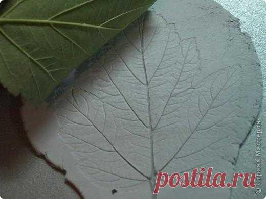 Интересная работа с листьями (для детей и взрослых) | Сами с усами